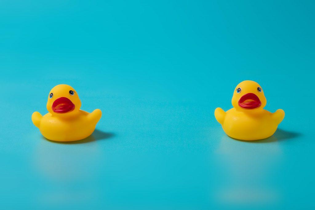 Quack Quack, 2 Little Ducks…